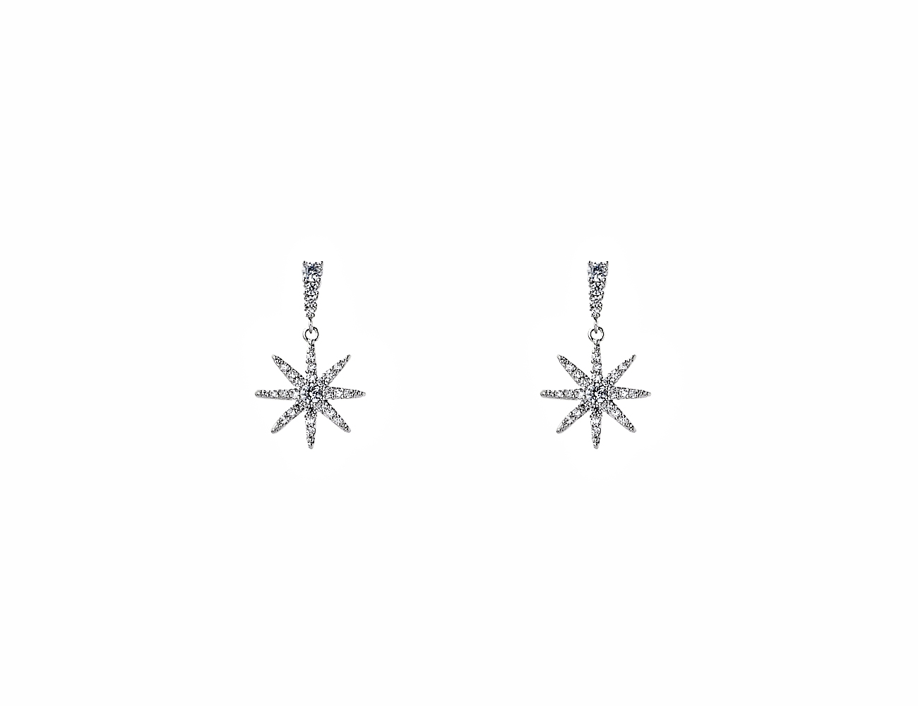 Earrings PT051113